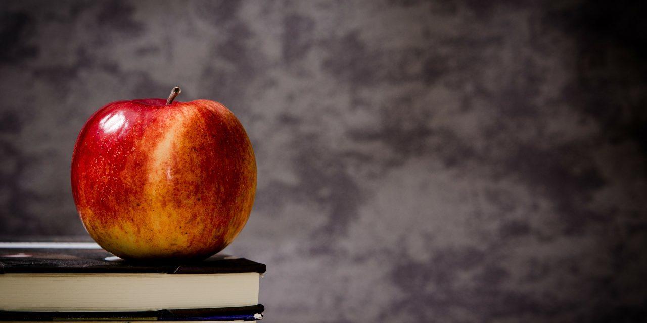 Trump seeks to slash Education Department but make big push for school choice